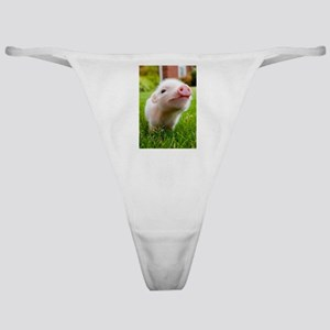 Baby Pig Classic Thong