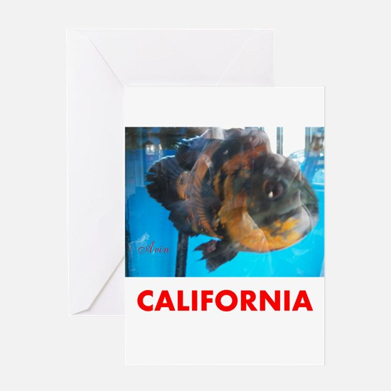 CALIFORNIA AVINS FISH. Greeting Card