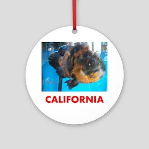 CALIFORNIA AVINS FISH. Round Ornament