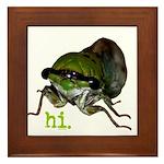Cicada hi. Framed Tile