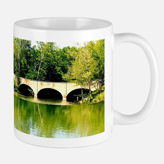 Reflected Images. Mugs