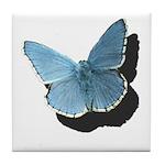 Blue Moth Tile Coaster
