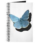 Blue Moth Journal