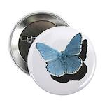 "Blue Moth 2.25"" Button (10 pack)"