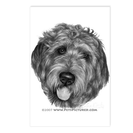 Labradoodle Postcards (Package of 8)