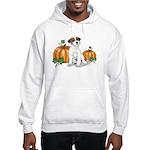 Russell Autumn Hooded Sweatshirt