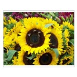 Bee Dance On A Sunflower Day Posters Small Poster