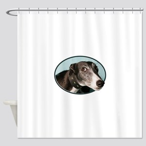Guilty Greyhound in Oval Shower Curtain