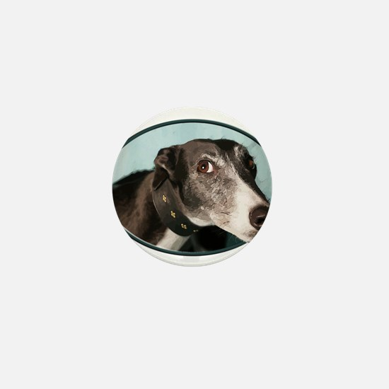 Guilty Greyhound in Oval Mini Button