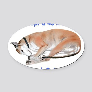45 MPH Couch Potato Oval Car Magnet