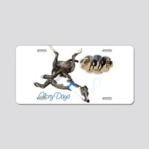 Glory Days Aluminum License Plate