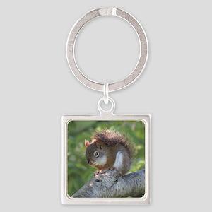 Red Squirrel Keychains