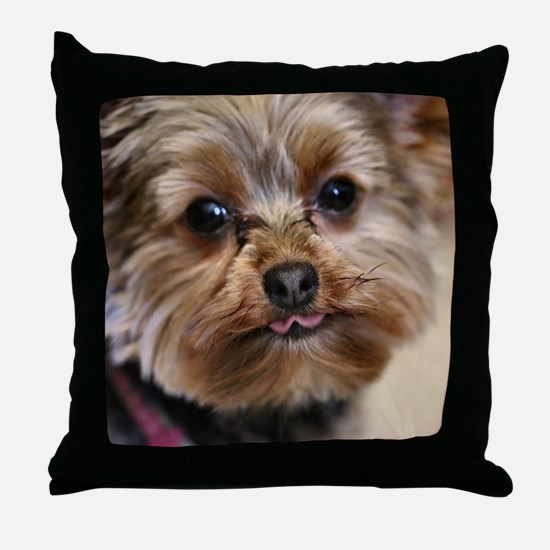 Funny Yorkshire terriers Throw Pillow