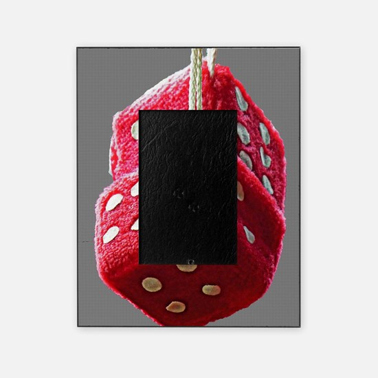 Red Fuzzy Dice Picture Frame