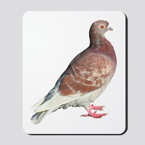 Red Pigeon (Isolated) Mousepad
