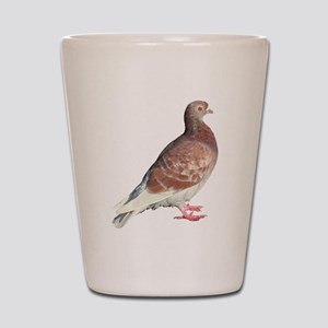 Red Pigeon (Isolated) Shot Glass