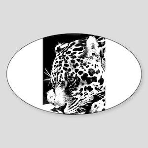 Leopard at night. Sticker