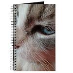 Blue Eyes Journal