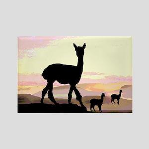 Sunset Hills Alpacas Rectangle Magnet