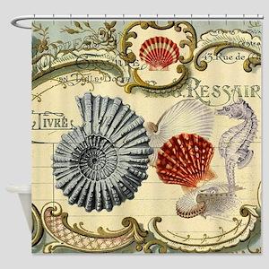 elegant paris beach seashells  Shower Curtain