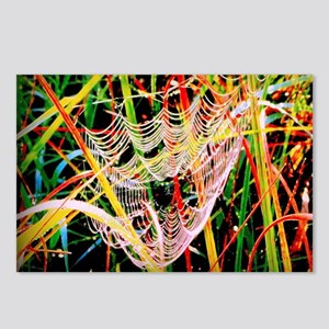 A Big Ol' Spider Sat Down Postcards (Package of 8)