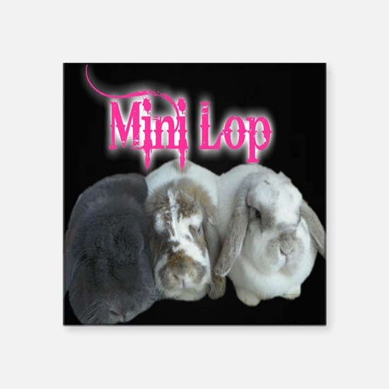 Mini Lop Trio Sticker