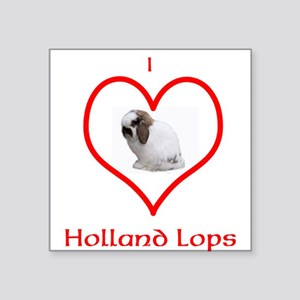 I heart Holland Lops Sticker