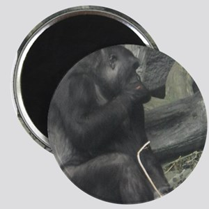 Gorilla Magnets