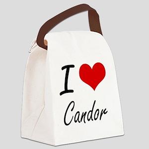 I love Candor Artistic Design Canvas Lunch Bag