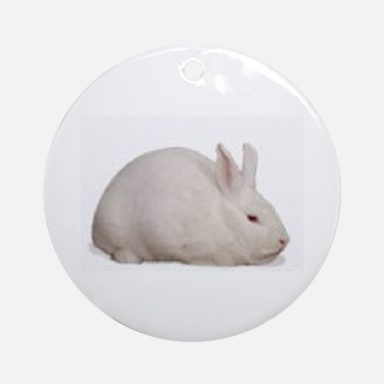 florida_white Ornament (Round)