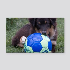 Australian Shepherd Pup Rectangle Car Magnet