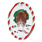 Australian Shepherd Christmas Oval Ornament