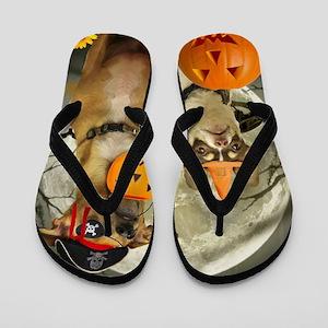 Halloween Chihuahuas Flip Flops