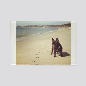 French Bulldog on the Beach Magnets