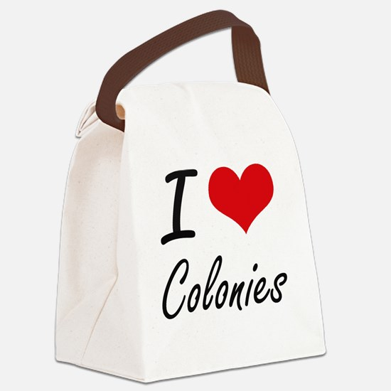 I love Colonies Artistic Design Canvas Lunch Bag