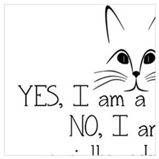 YES, I AM A CAT PERSON... Poster