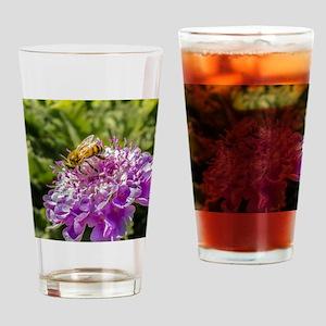 Honeybee on a Pincushion Flower Drinking Glass