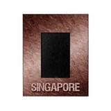 Singapore Picture Frames