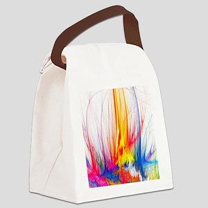 Paint Splatter Canvas Lunch Bag
