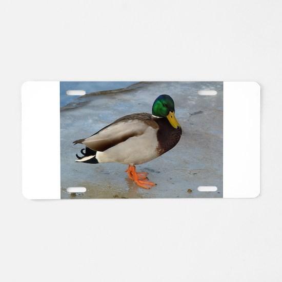 quack Aluminum License Plate