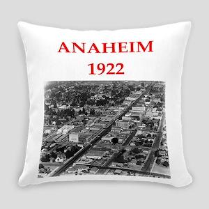 anaheim Everyday Pillow