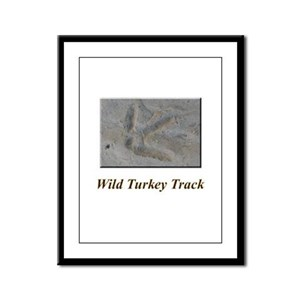 Wild Turkey Track Framed Panel Print