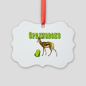 Springboks Rugby Ornament