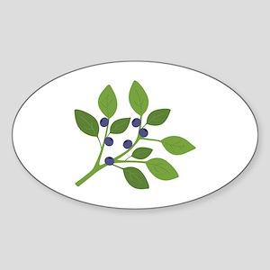 Blueberry Branch Sticker