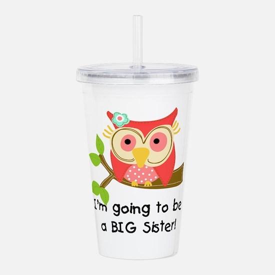 Owl Future Big Sister Acrylic Double-Wall Tumbler