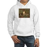 Boston Dog Show Hooded Sweatshirt