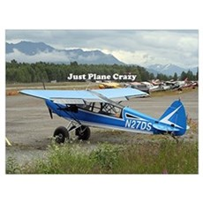 Just plane crazy: high wing aircraft Poster