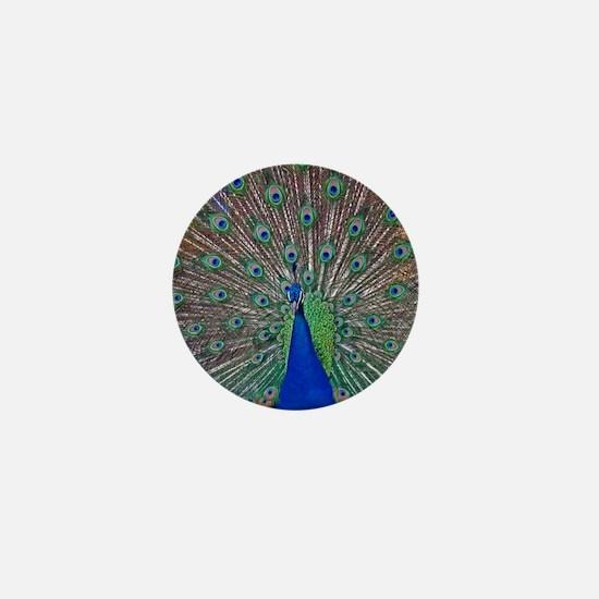 Peacock 1512 Mini Button
