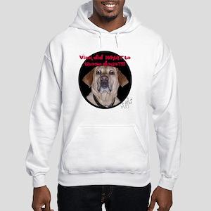Shocked Dog Hooded Sweatshirt