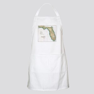Vintage Map of Florida (1848) Apron